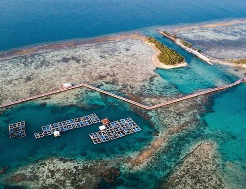 Tempat Wisata Pulau Tidung Hilangkan Stres dan Penat